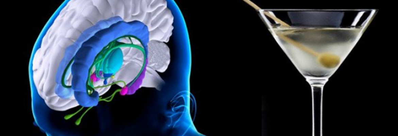 ¿Es cierto que el alcohol mata las neuronas?